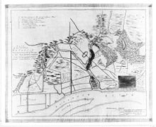 Capture of Savannah