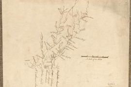 Map - 178? - Savannah River and Ogeechee River
